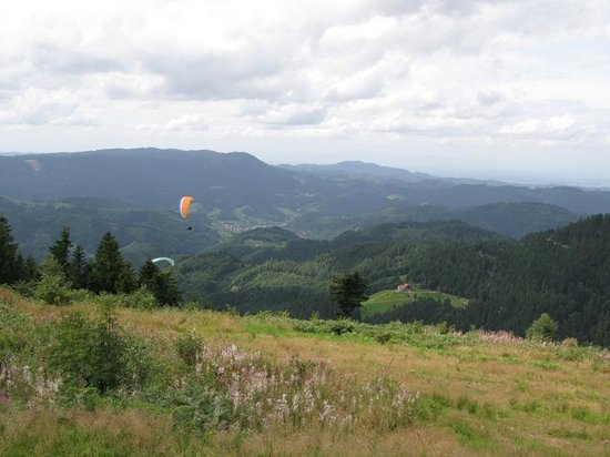 Baden-Wurttemberg, Jerman: Blackforest from the mountain view