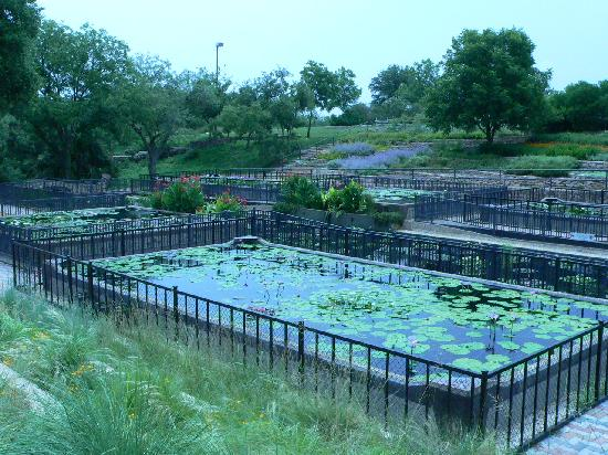 The International Water Lily Garden @ Civic League Park: Small waterfall