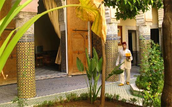 Riad Jaouhara : the garden