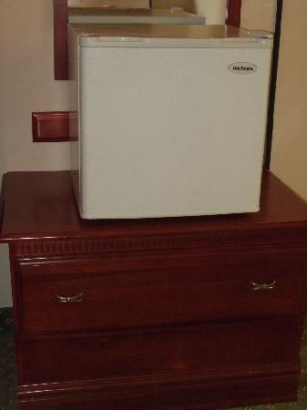 Hampton Inn And Suites Valley Forge/Oaks: The Fridge Fit, However, It