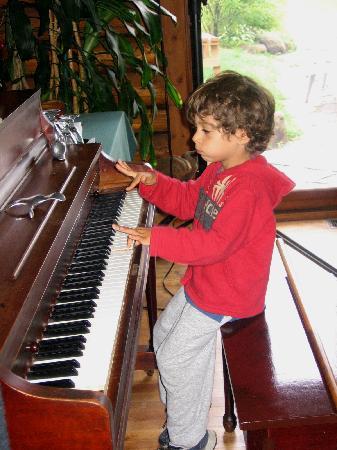 Auberge Rustique : Piano