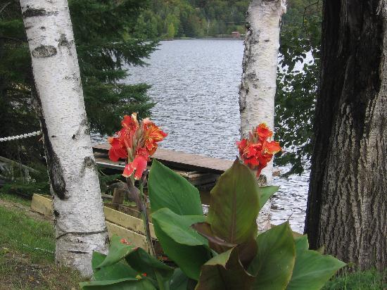 Auberge Rustique : Lac