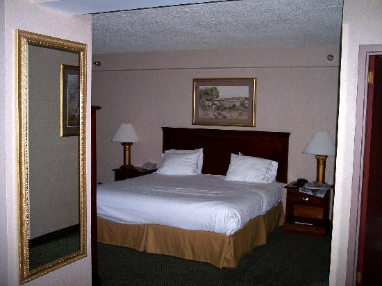 Holiday Inn Express Hotel & Suites West Mifflin: bedroom area with TV