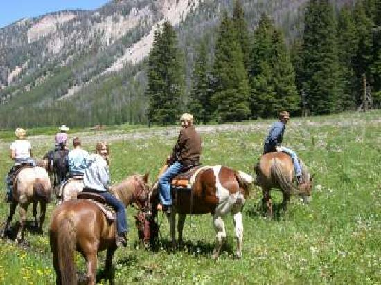 Flat Creek Ranch: Horseback riding