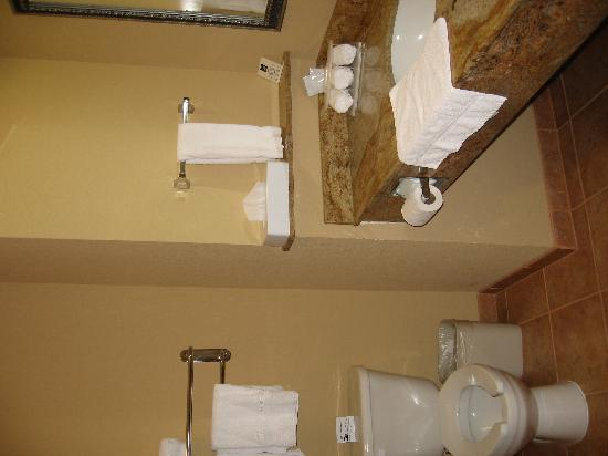 Holiday Inn Express Salado-Belton: very clean and roomy bathroom