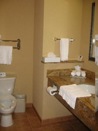 Holiday Inn Express Salado-Belton : very clean and roomy bathroom