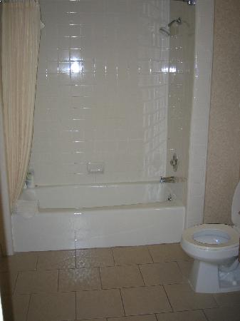 BEST WESTERN Royal Palace Inn & Suites: bathroom