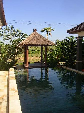 Balam Bali Villa : Balam, pavillon