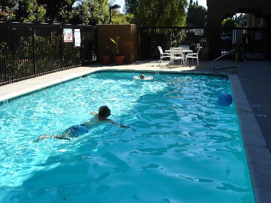 Hampton Inn Oakland-Hayward: La piscine chauffée