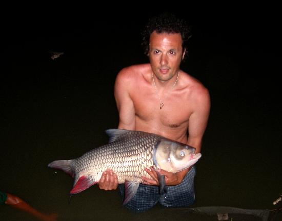 Gillhams Fishing Resorts: Siamese Carp (Approx. 12kg)