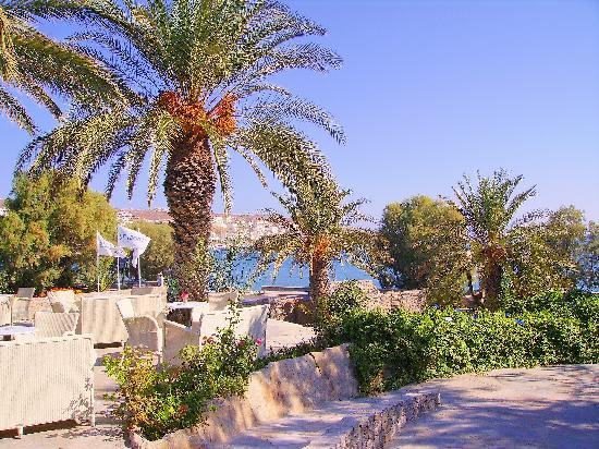 Sitia Beach City Resort & Spa : le bar avec une vue magnifique sur la mer