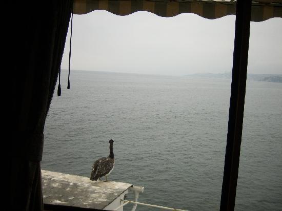 Hotel Restaurant Cap Ducal: El mar visto desde la habitación