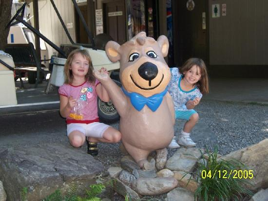 Yogi in the Smokies: boo boo