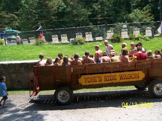 Yogi in the Smokies: water wagon ride