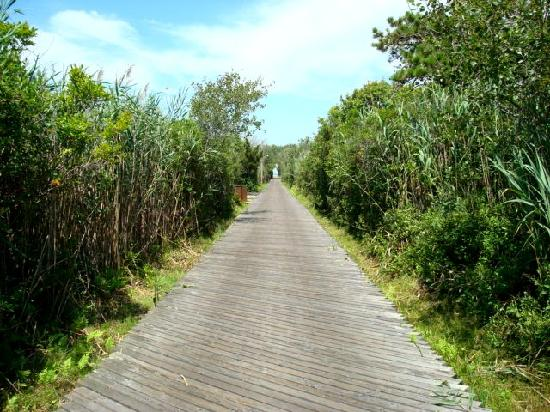 Fire Island, NY: beautiful area.  Bring a bike if you want to ride the journey. It's nice!