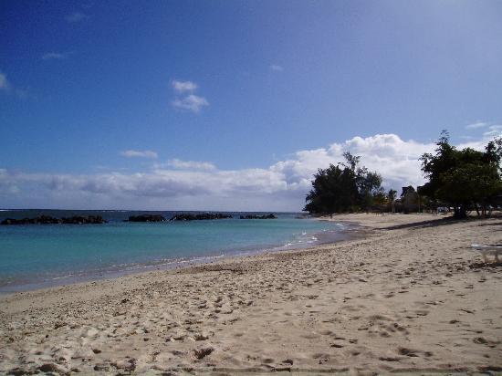 Sands Suites Resort & Spa: the beach