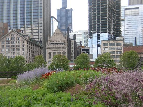 Millenium Park Picture Of Hilton Garden Inn Chicago Downtown Magnificent Mile Chicago