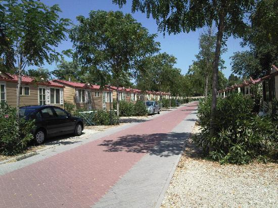 Camping Village Roma: A street of bungalows