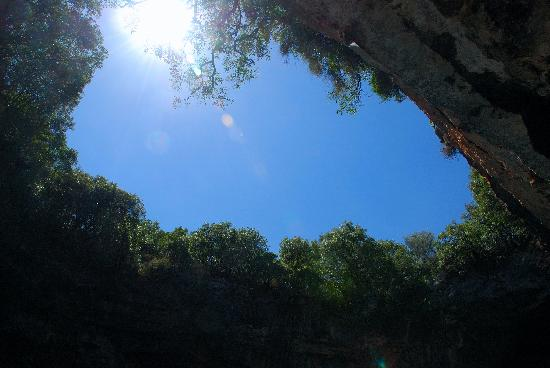 Roof of Melissani Cave