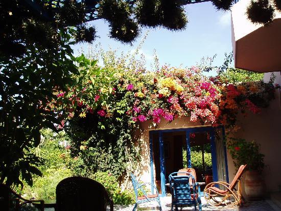 Villa Mandarine: more garden view