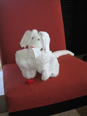 Presidente Inter-Continental Cozumel Resort & Spa : Love the towel animals!!