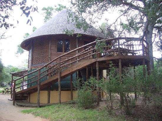 ‪‪Bonamanzi Game Reserve‬: Our Tree House‬