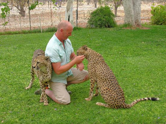 Kamanjab, Namibya: Me and tame Cheetah
