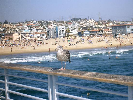 A Sun Drenched Beach Village Of Just 1 3 Square Miles Hermosa Sits At The Edge Pacific 5 South Los Angeles