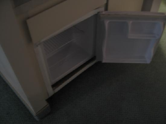 Budgetel River Inn Redding Hotel: Mini Fridge