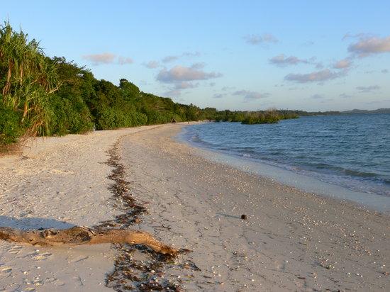 Fundu Lagoon: Plage devant l'hotel