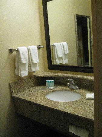 SpringHill Suites Salt Lake City Downtown: Inner bath