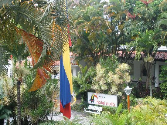 Hotel Avila: Eingang und Garten