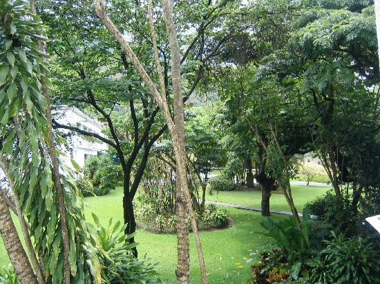 Hotel Avila: Garten