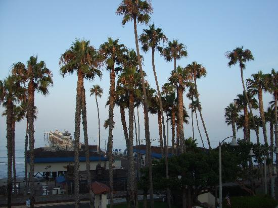 Villa Del Mar: The pier at 7:00 am