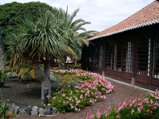 Parador de la Gomera: Pequeña parte de los jardines
