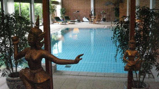 Hotel Hesselet: indoor pool