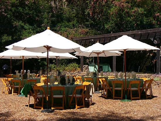 Sand Rock Farm Bed and Breakfast : Tables in the Winery Meadow