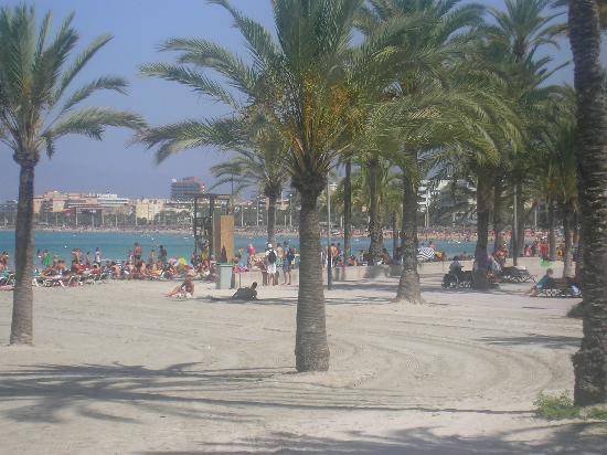 Hotel Pinero Tal: la playa situada al bajar la calle del hotel