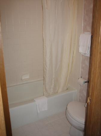Rodeway Inn: bath/toilet area