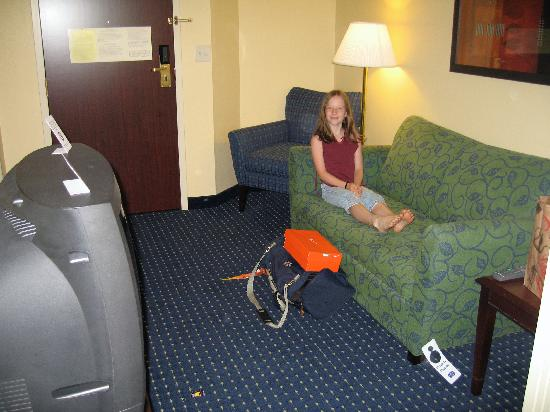 Living Room Area Picture Of Springhill Suites Hershey Near The