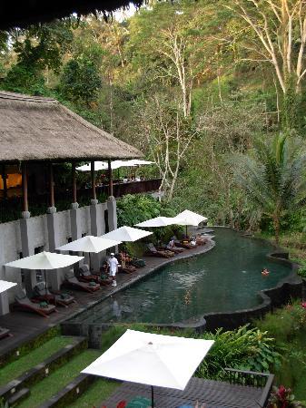 Maya Ubud Resort & Spa: Pool at the Spa and the River Cafe