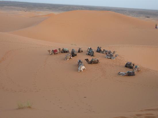 Ouarzazate, Marruecos: キャラバン
