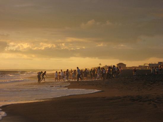 Hotel Las Olas Beach Resort: Turtle Release Playa la Barqueta/Las Olas