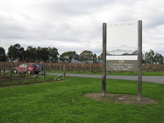 Quality Hotel Marlborough: Cloudy Bay Winery
