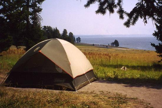 Bridge Bay Campground: Bridge Bay #280