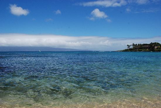 The Napili Bay: View from Napili Bay Resort