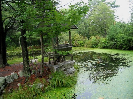 Highland, Estado de Nueva York: Pond at Mohonk