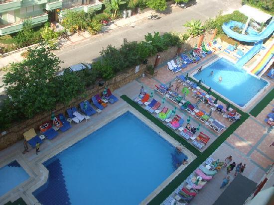 Club Big Blue Suite Hotel: big blue