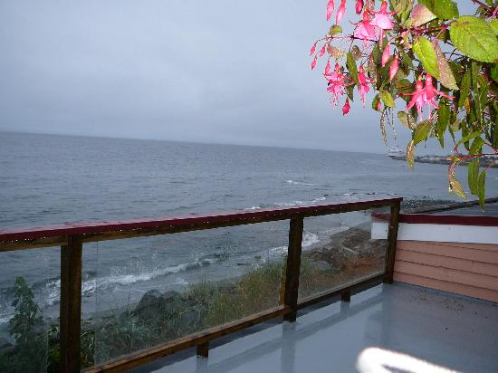 Copes' Islander Oceanfront B&B : the view from our room