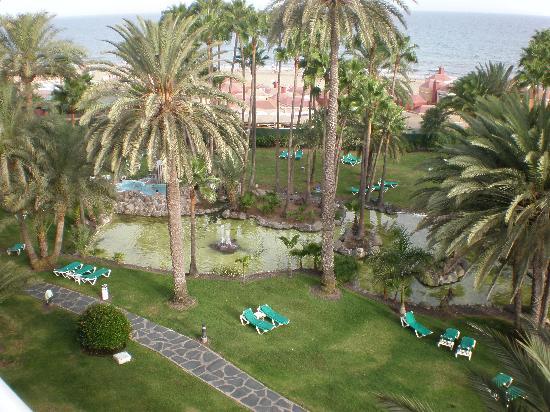 Hotel Riu Palace Oasis: garden